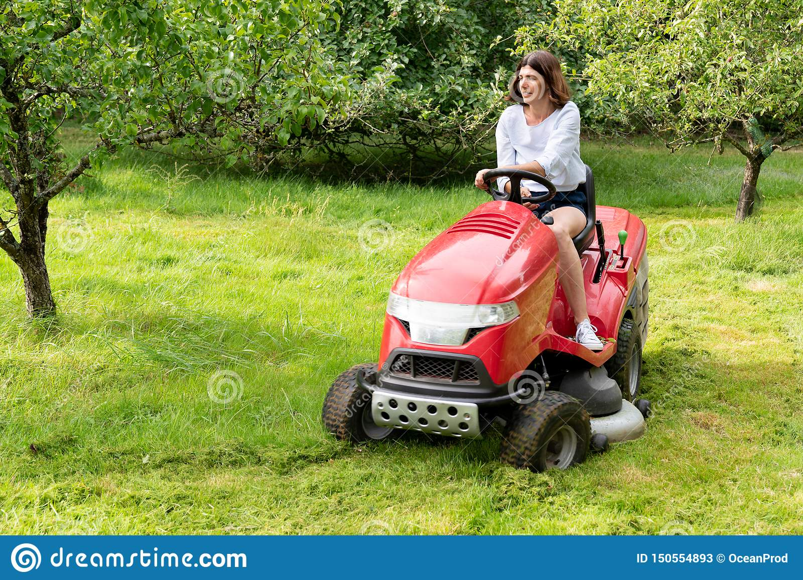 Senior Woman On A Lawn Mower Stock Photo - Download Image