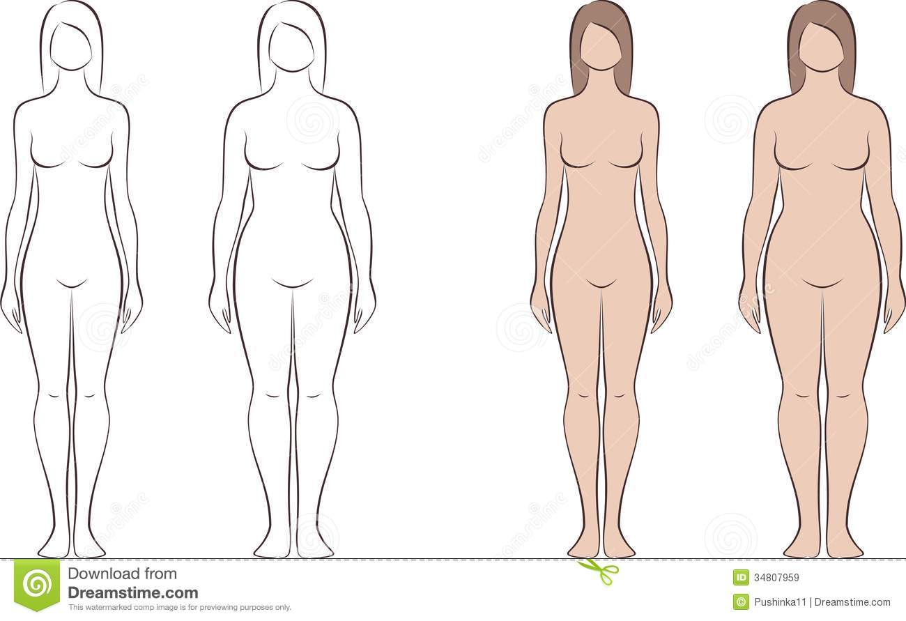 Vector illustration of female figure. Different body types. Silhouette ...: www.dreamstime.com/royalty-free-stock-images-woman-figure-vector...