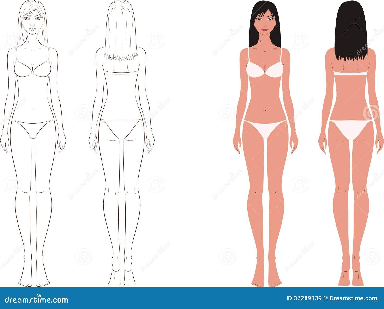 Схемы для рисования женского тела