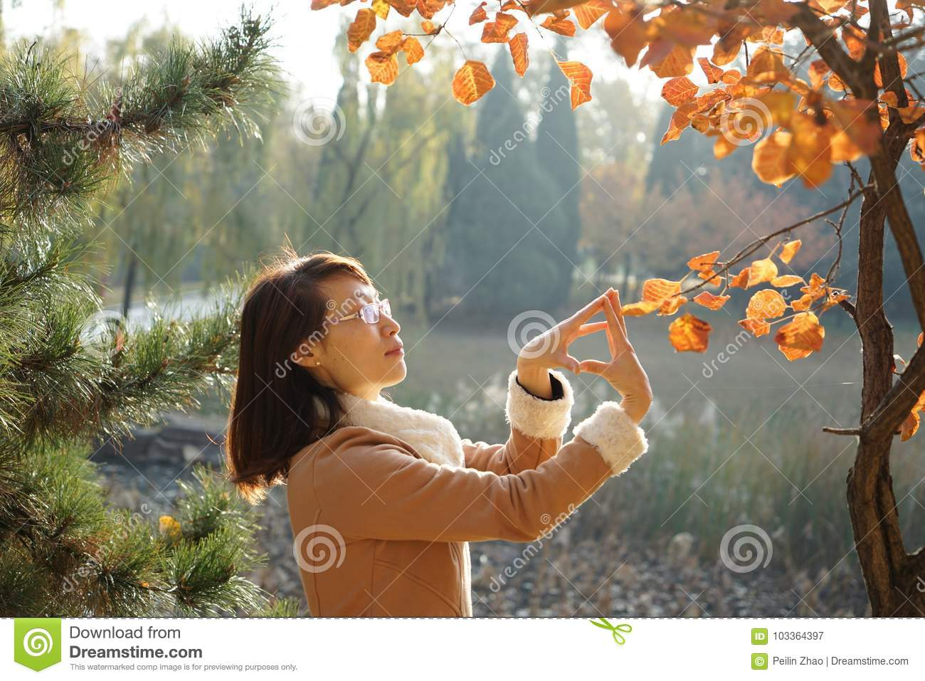 A woman and Ginko tree in fall