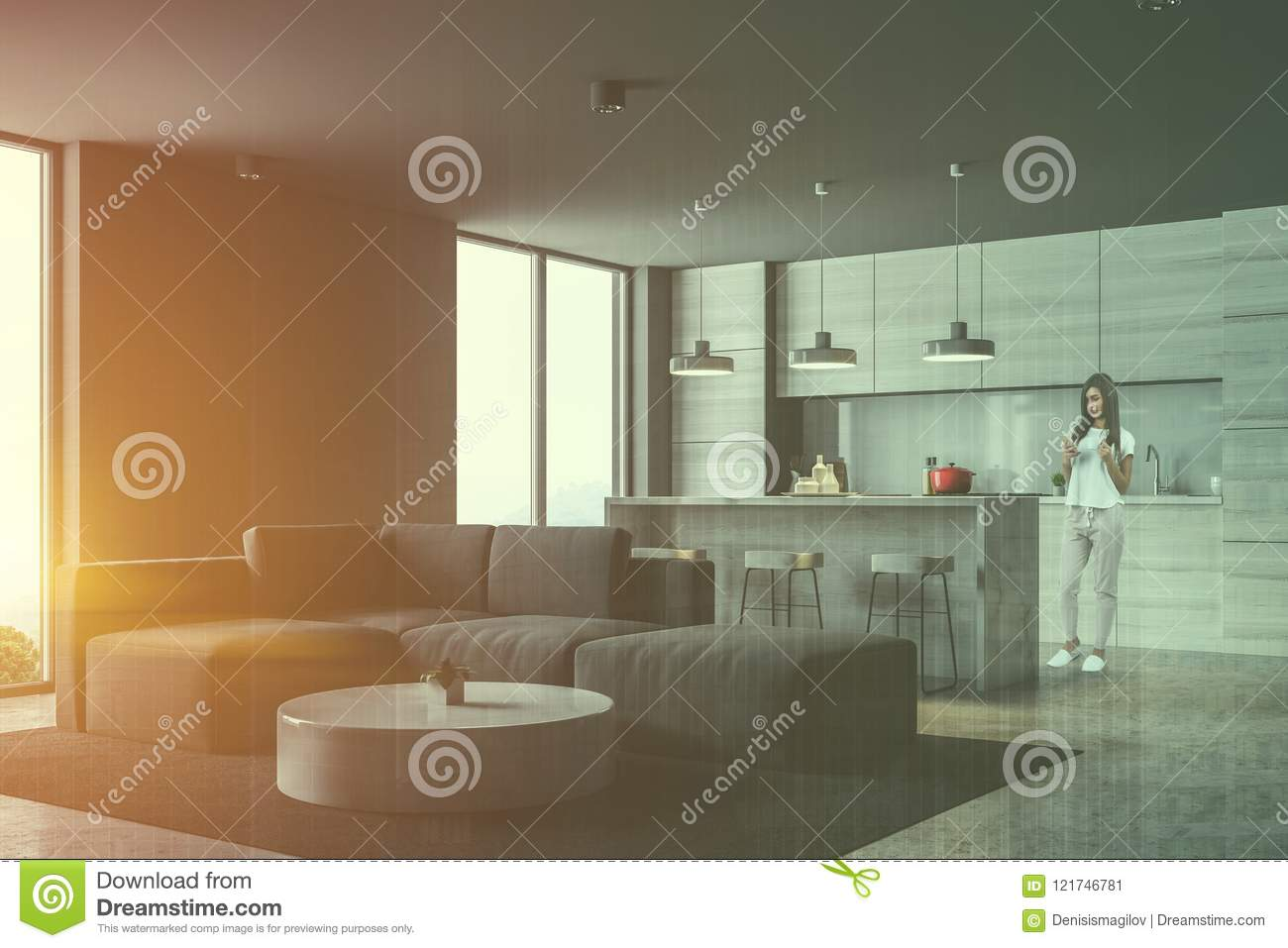 Download Gray Kitchen And Living Room Corner, Woman Stock Illustration    Illustration Of Minimalistic,