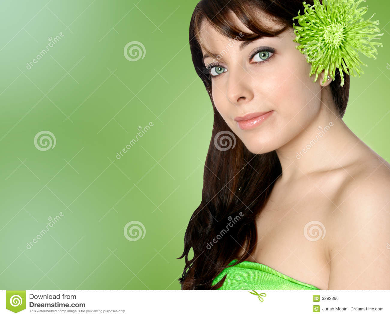 Woman With Green Chrysanthemum Stock Photo Image Of Girl