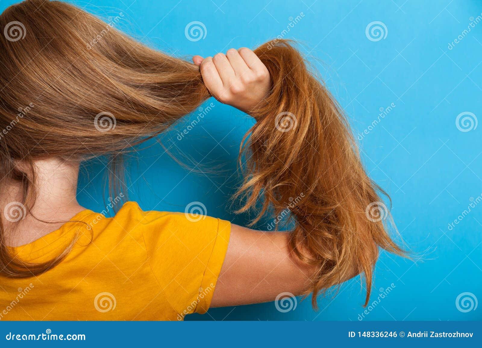 Woman hair problem concept, healthy long brunette