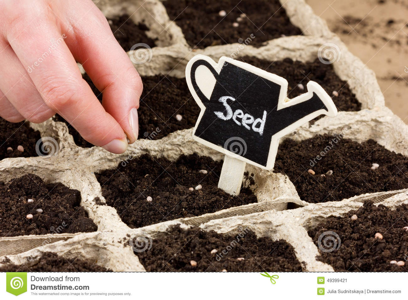 woman hand planting seed in the ground or soil spring sowing stock photo image 49399421. Black Bedroom Furniture Sets. Home Design Ideas