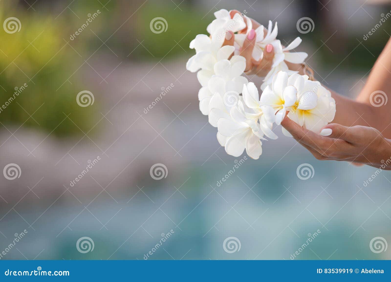 Woman hands holding flower lei garland of white plumeria stock download woman hands holding flower lei garland of white plumeria stock image image of izmirmasajfo