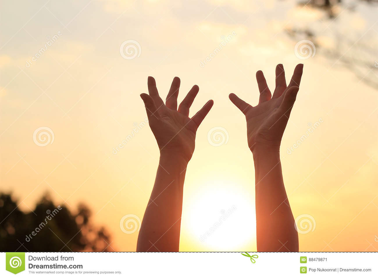 woman hands praying for blessing on sunset background stock image
