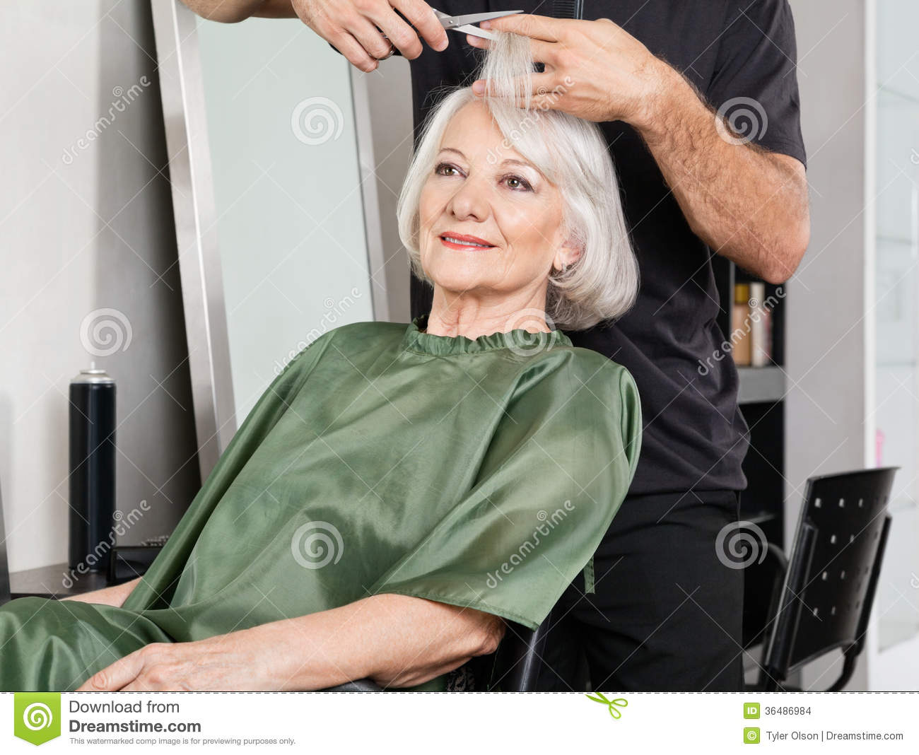 Woman having hair cut at salon stock images image 36486984 for Salon seniors