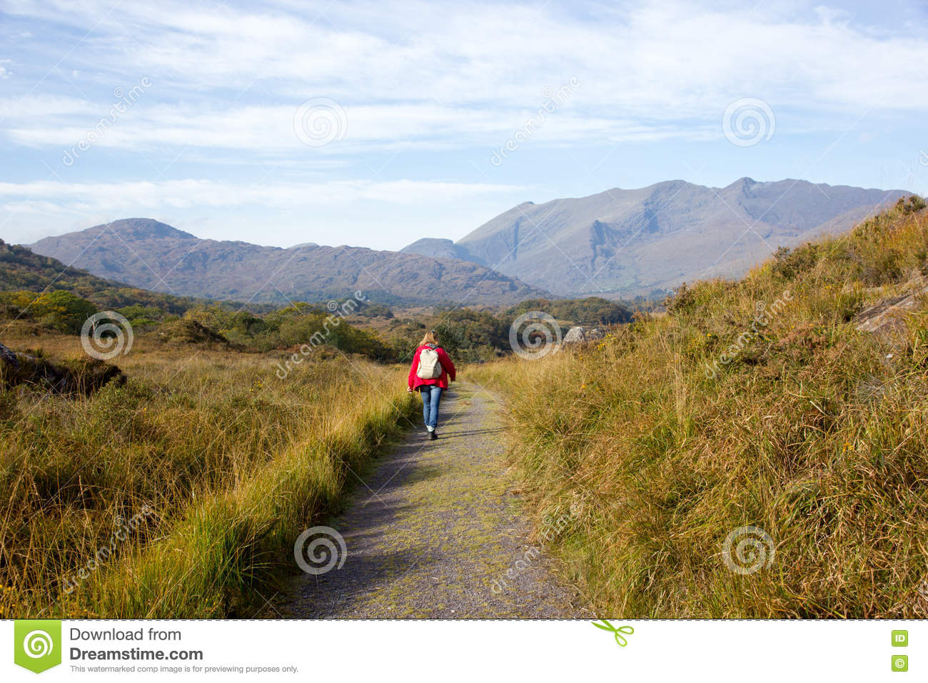 Woman On Hiking In Killarney National Park Stock Photo Image Of