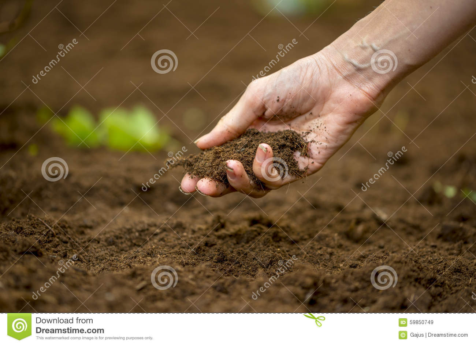 Woman holding a handful of rich fertile soil