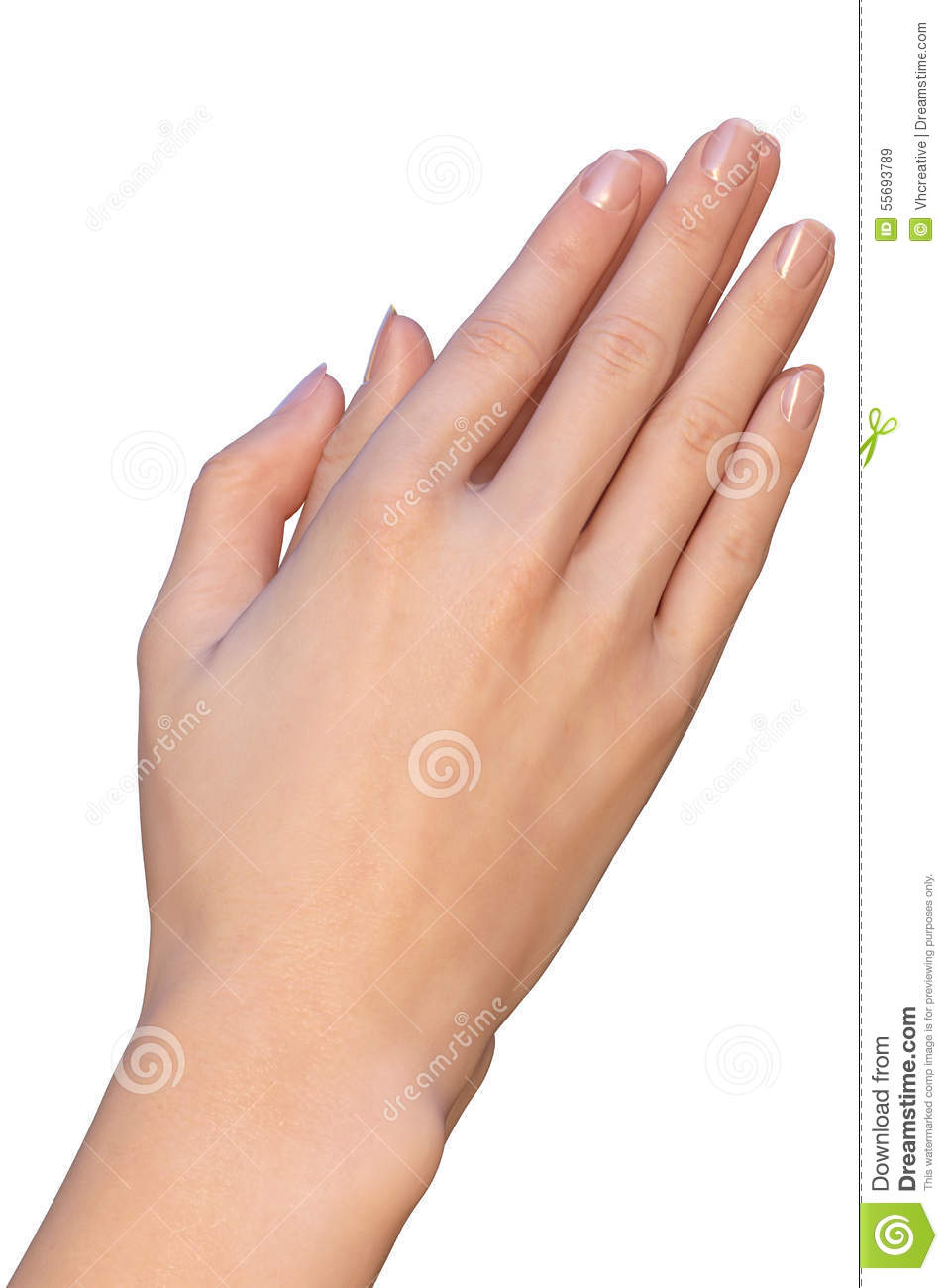woman is holding her hands for prayer stock photo