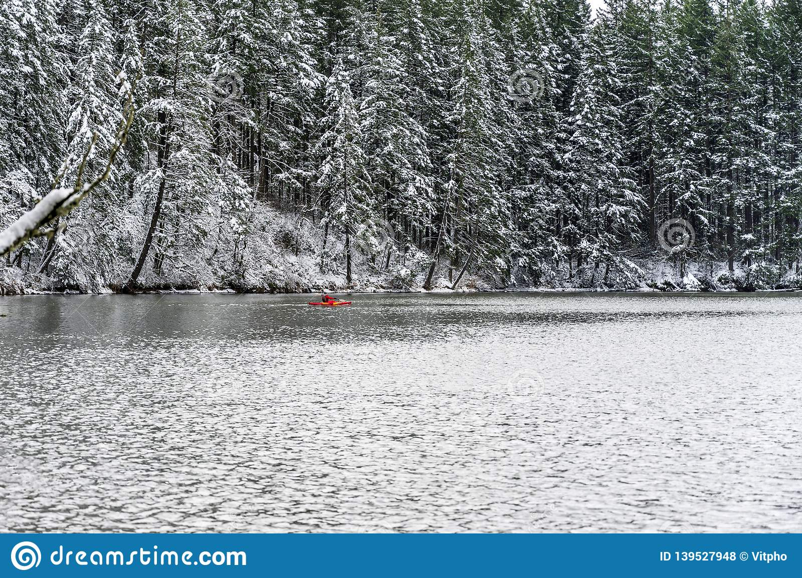 Woman Kayaking On A Snowy Winter Lacamas Lake In The Forest