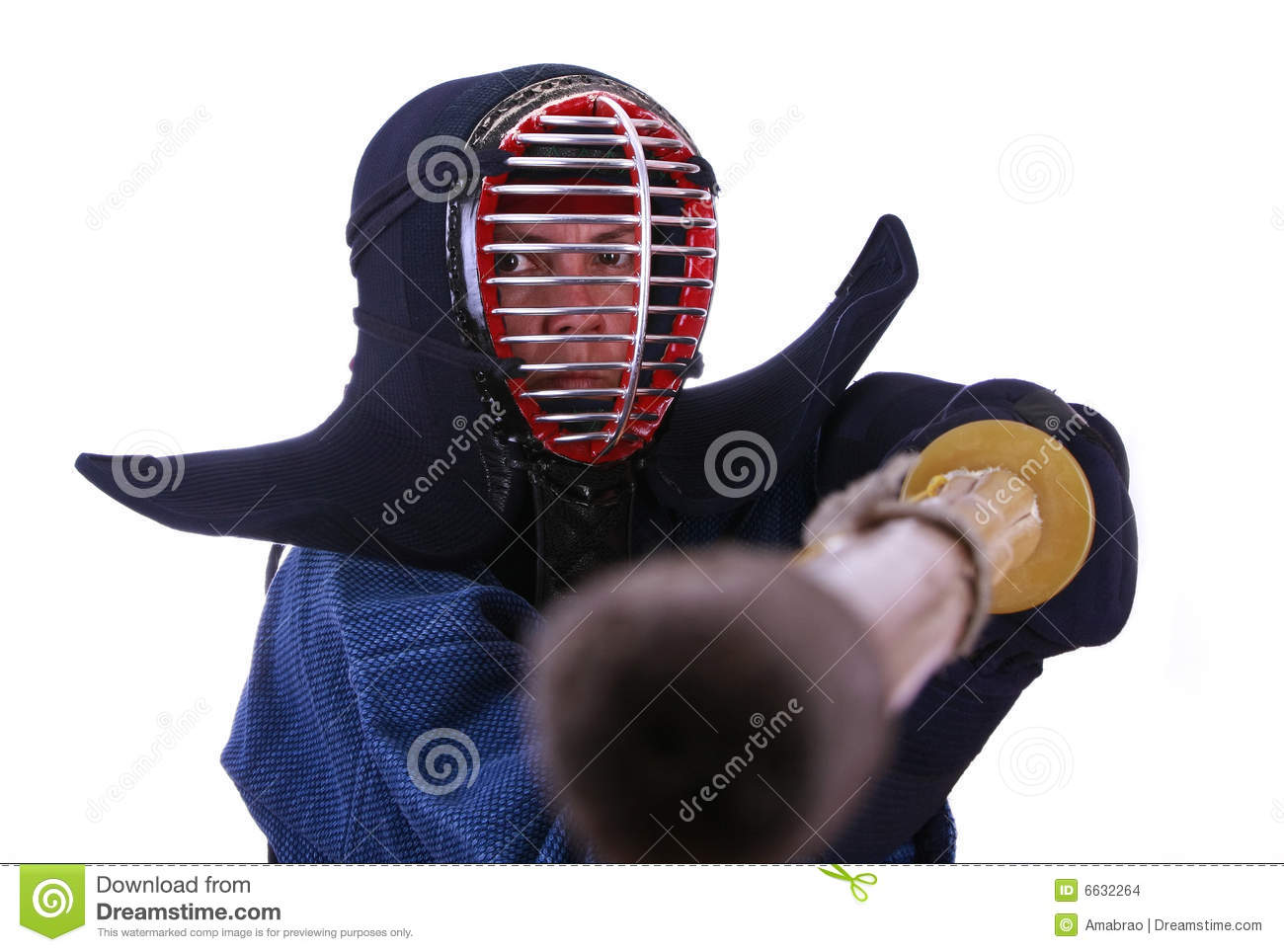 Woman In Kendo Helmet Prepared To Fight Stock Images