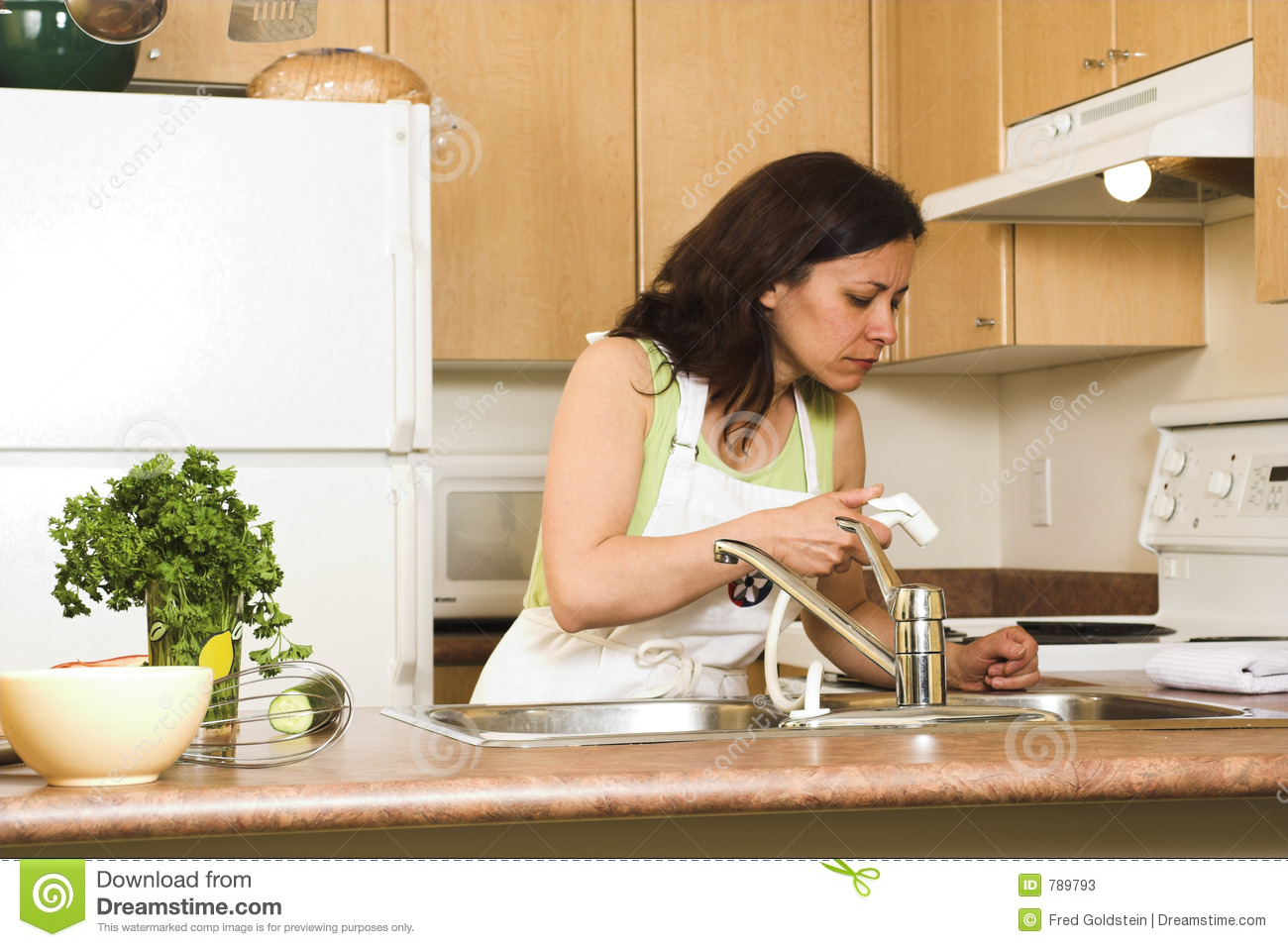 woman in kitchen stock image image of furniture home 789793