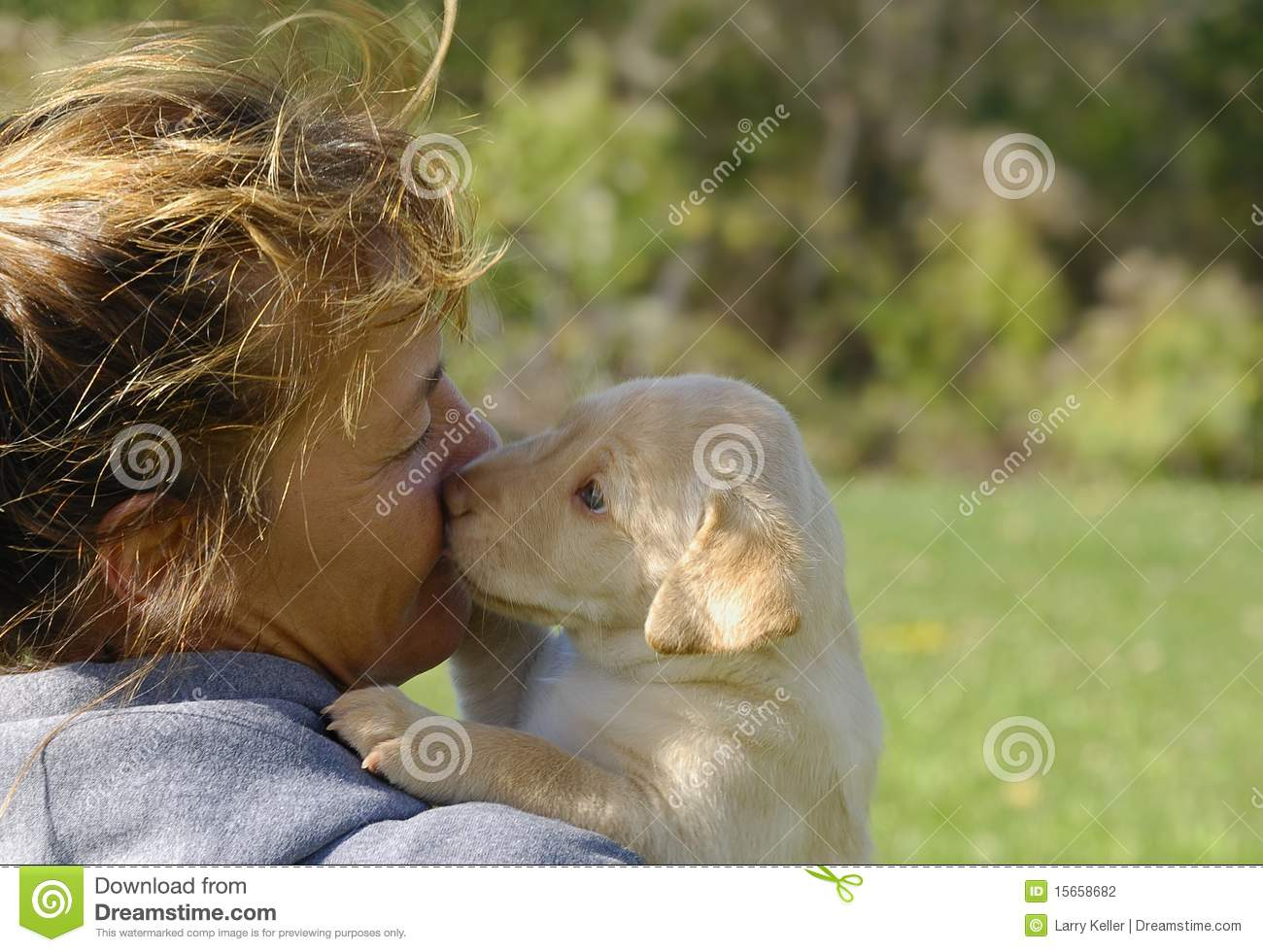 Woman With Labrador Puppy Stock Photo Image Of Countryside 15658682