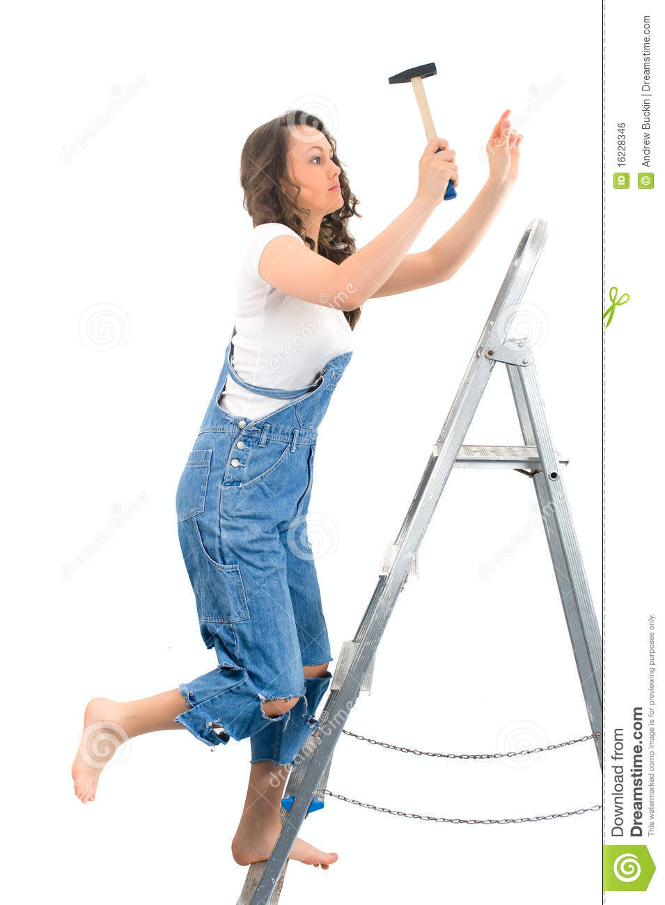 Woman On The Ladder Royalty Free Stock Image Image 16228346