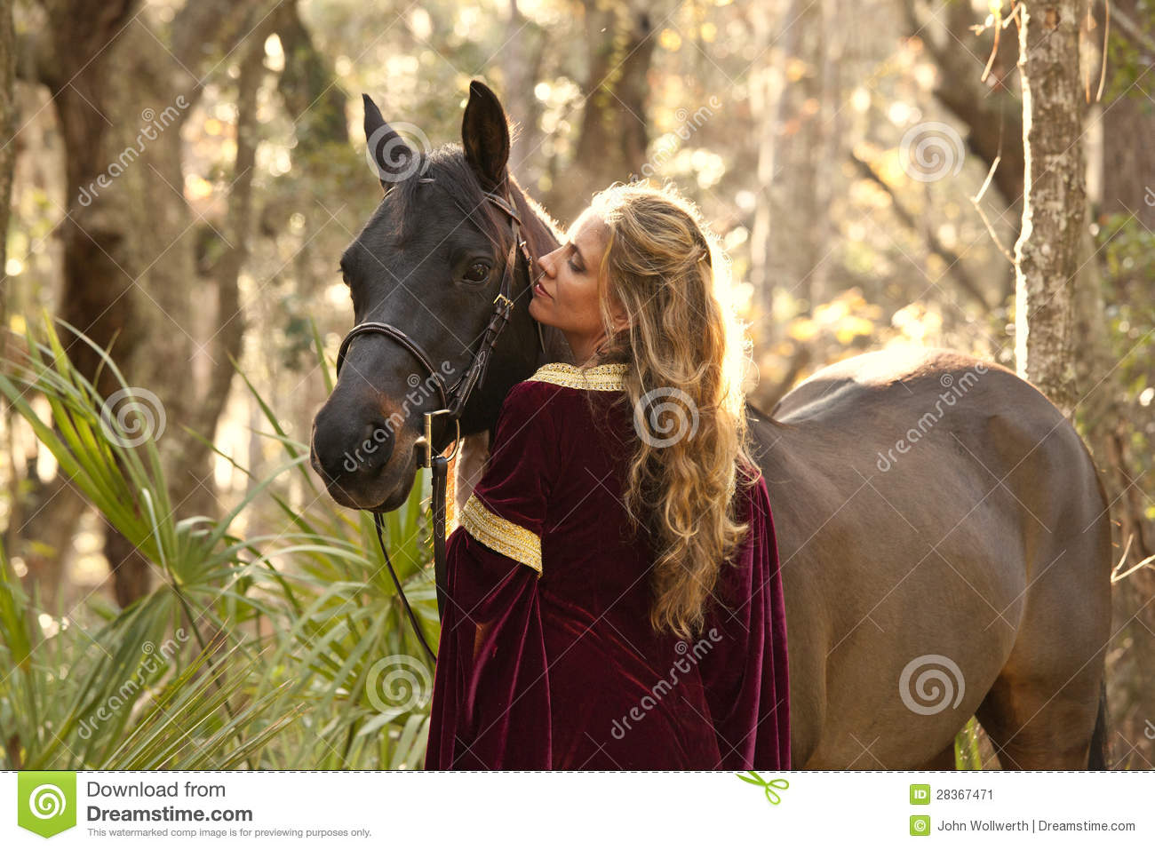 Woman In Medieval Dress With Horse Stock Image - Image ...