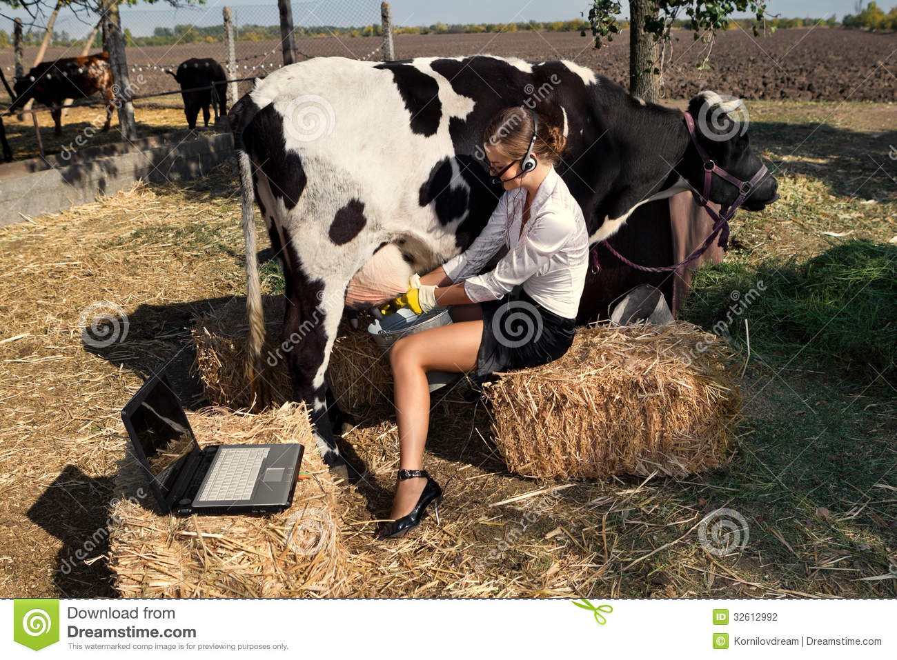 Cow sex photo with human porn galleries