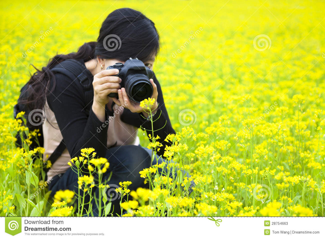 Woman Photographer Taking Pictures In Nature Stock Image