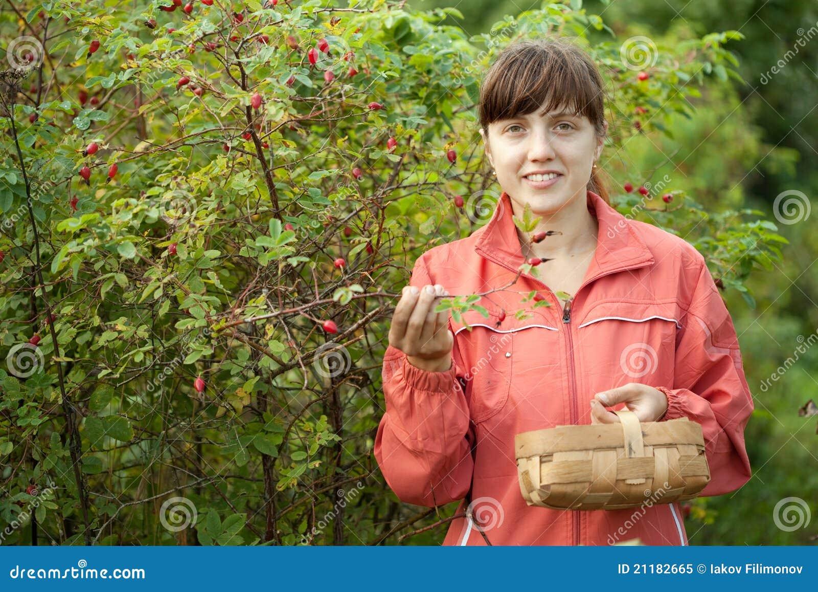 Woman picking brier