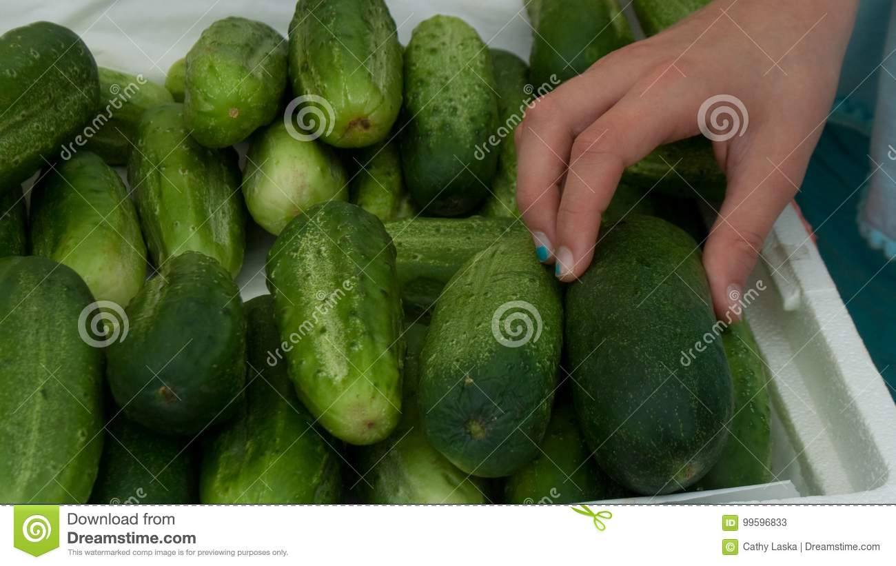 Woman picking out cucumber