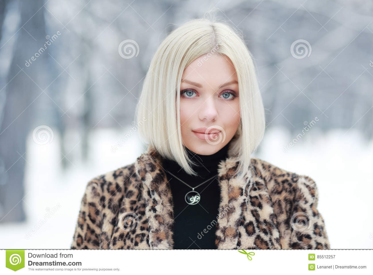 d2e6ab707 Woman portrait in winter stock image. Image of hair