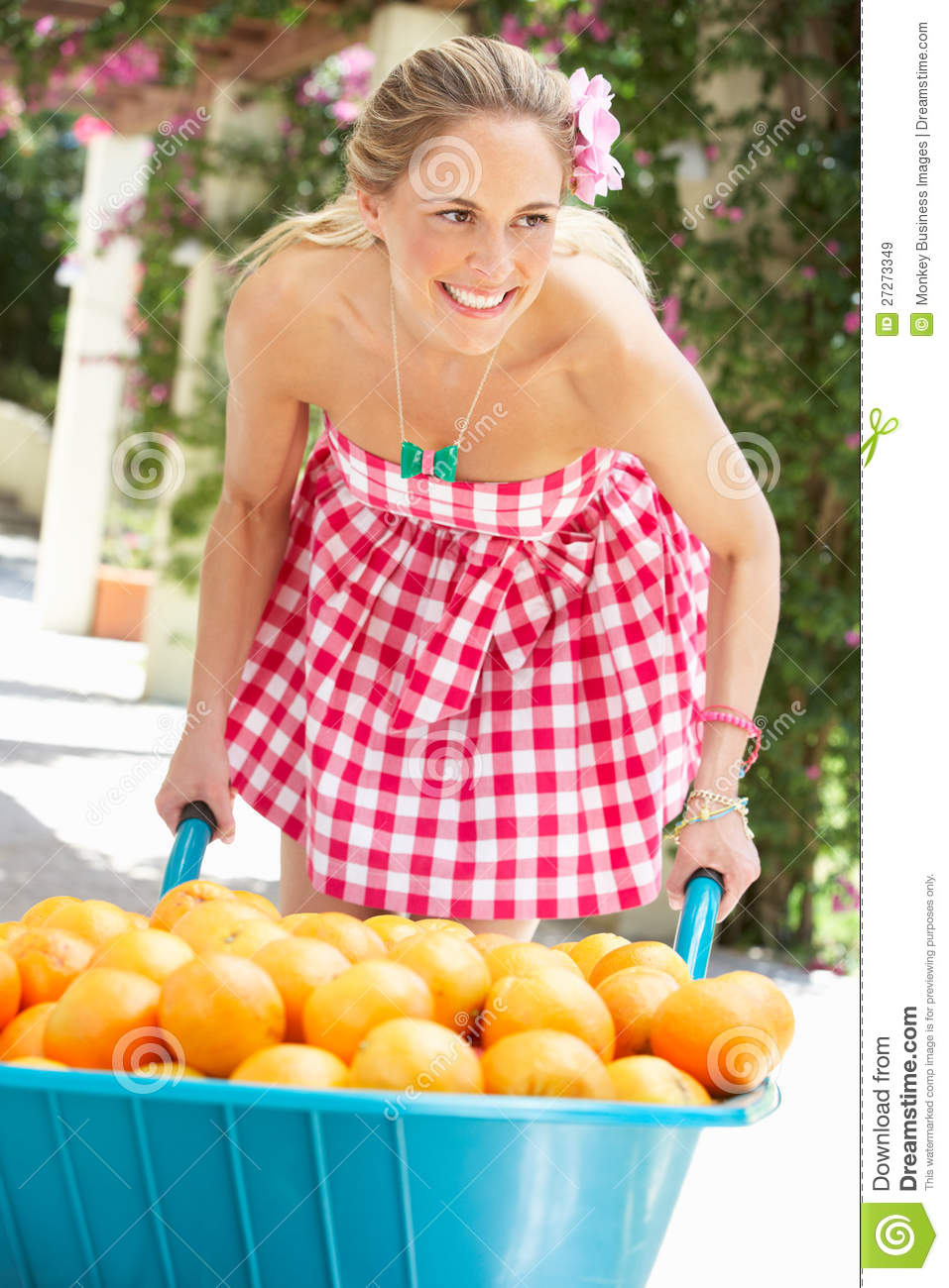 Woman Pushing Wheelbarrow Filled With Oranges Royalty Free ...