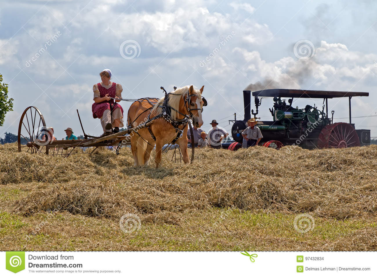 Woman Raking Hay With Horse Drawn Equipment Editorial Stock