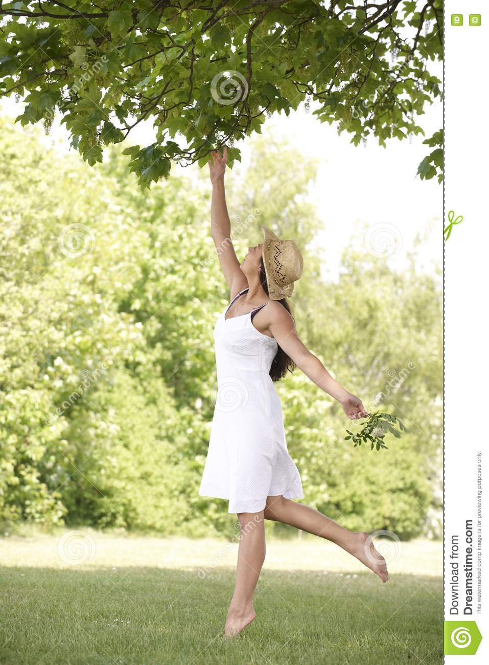 Woman Reaching Up To Branch Stock Photo Image Of