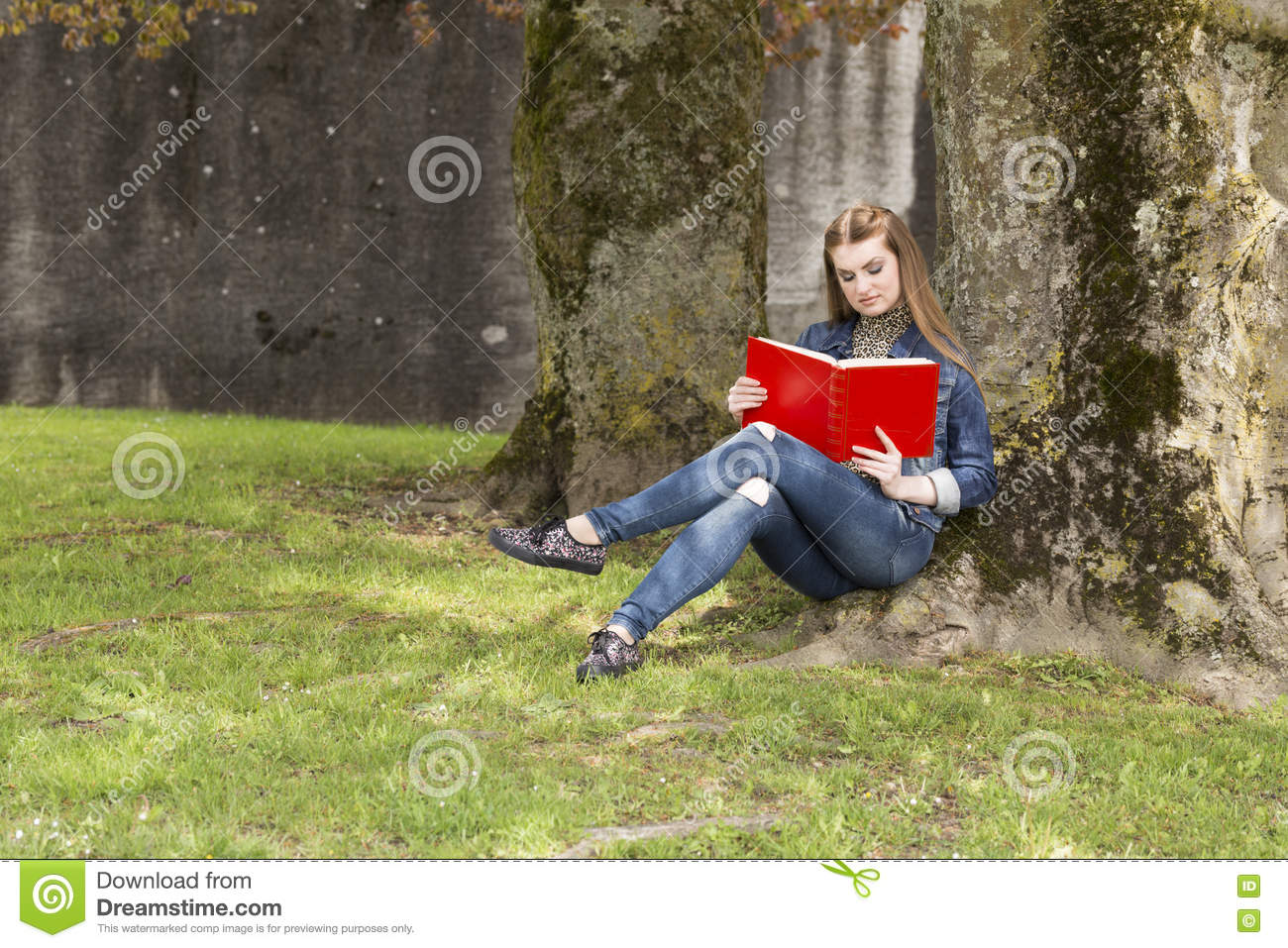 Download Woman_with_red_book-2 стоковое изображение. изображение насчитывающей green - 72284159