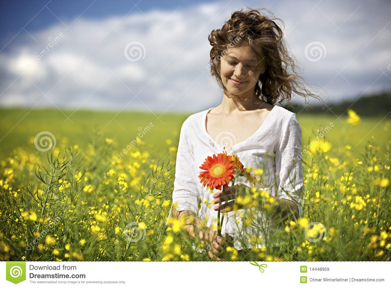 Woman With Red Flowers In Rapeseed Field. Stock Image ...