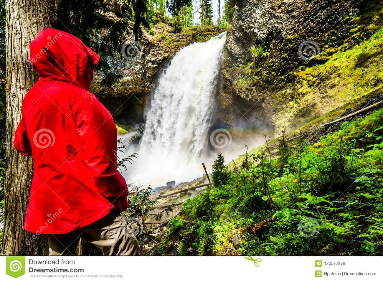 Moul Falls In Wells Gray Provincial Park, British Columbia