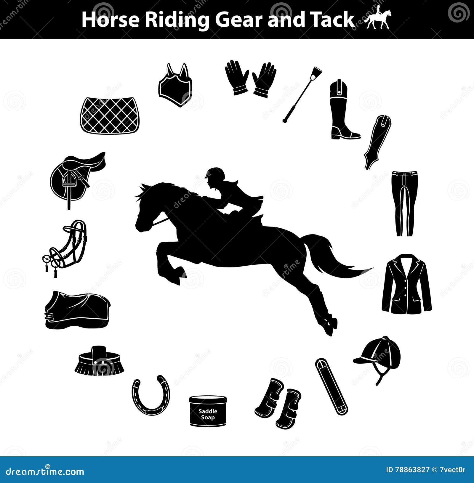 Horse Equipment Icon Set Color Thin Line Cartoon Vector ...