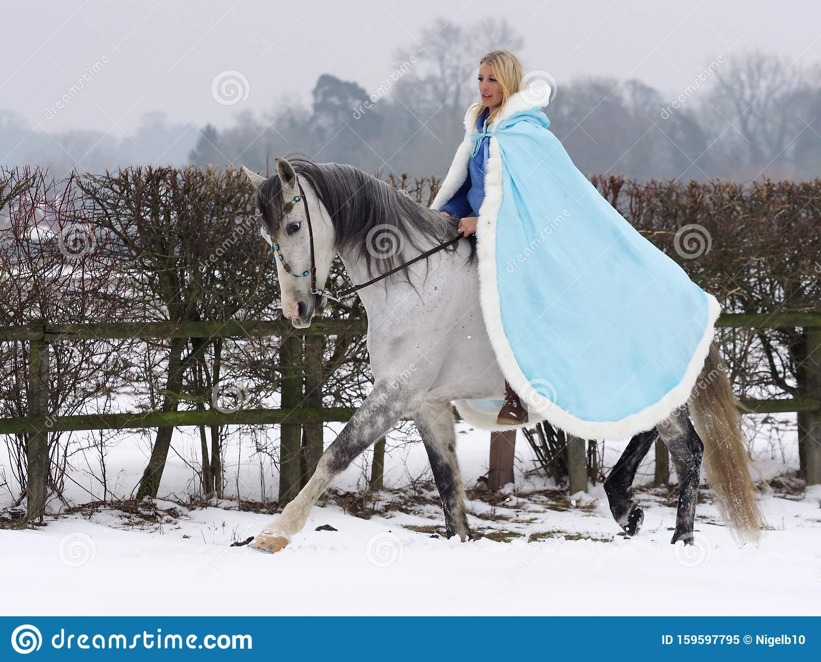 Woman Riding Horse In The Snow Stock Image Image Of Companion Leisure 159597795