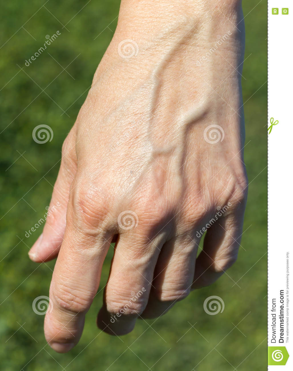 A Womans Left Hand Stock Image Image Of Five Grass 76612369