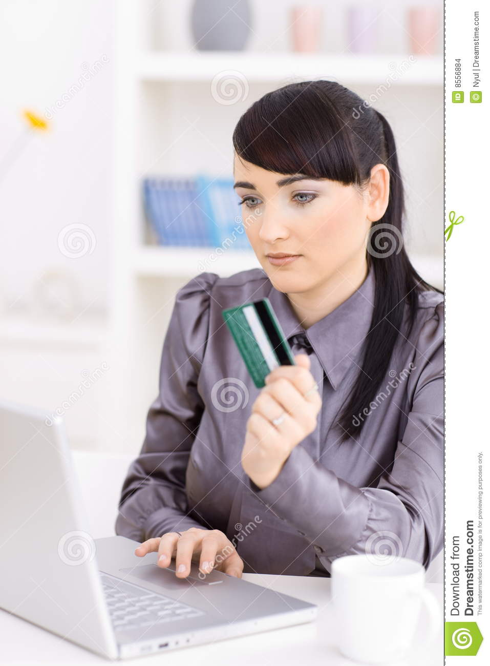 Woman Shopping Online Stock Images - Image: 8556884