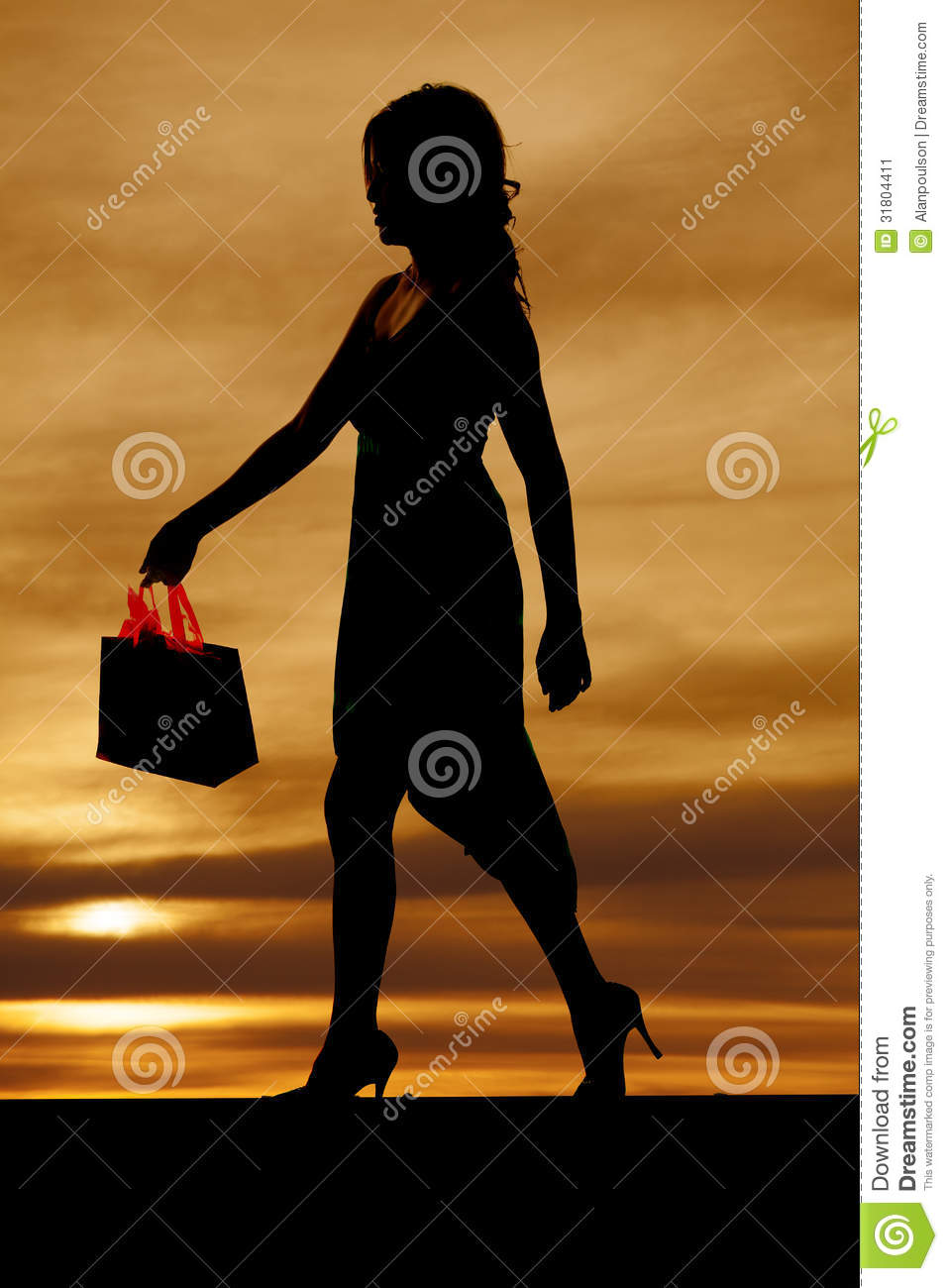 Woman Silhouette With Shopping Bag Stock Image - Image ...