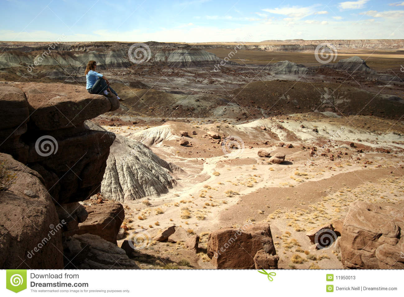 petrified forest natl pk black single women Petrified forest national park:  park notable there is the black forest bed, one of four remarkable areas of petrified trees of triassic age (ie, dating from .