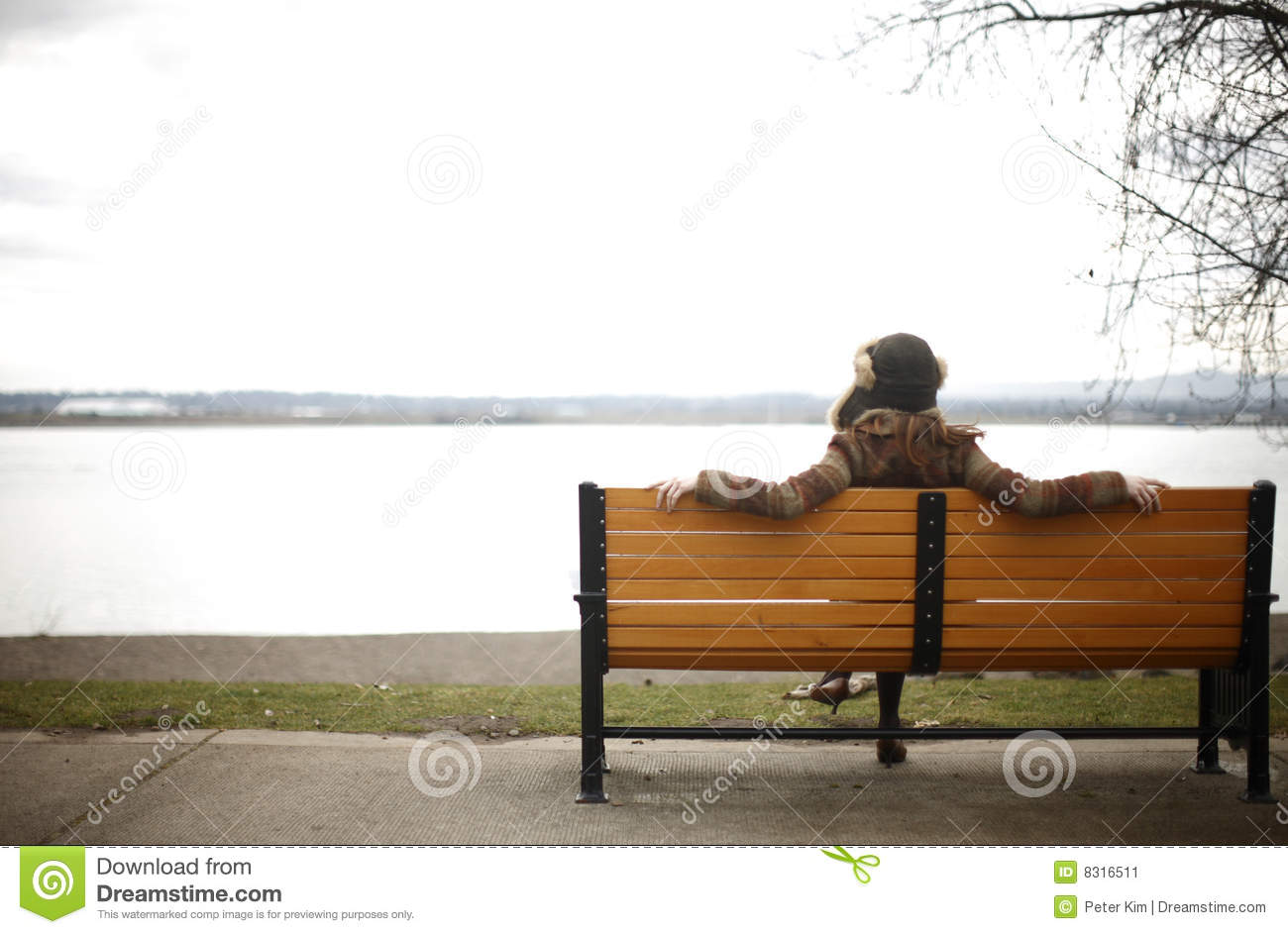Woman Sitting On Park Bench. Stock Image - Image: 8316511