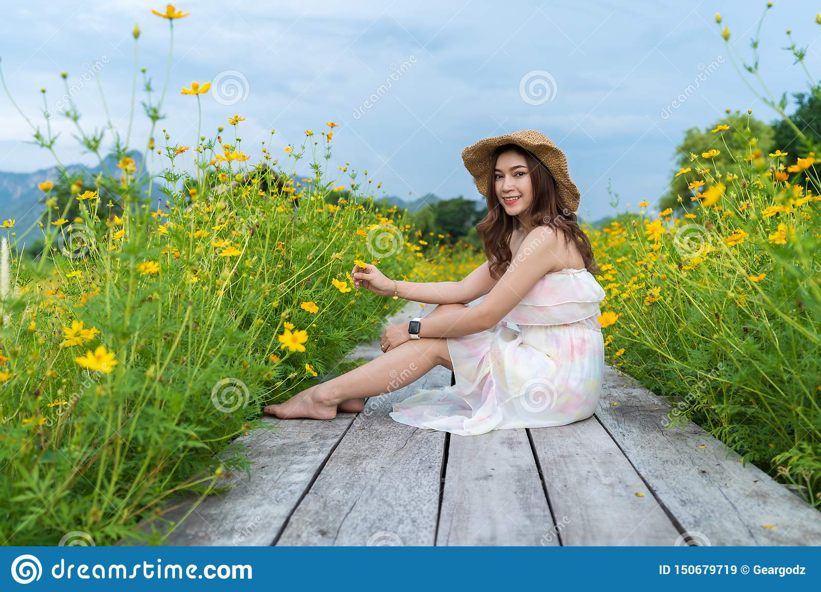 Woman sitting on wooden bridge with yellow cosmos flower field