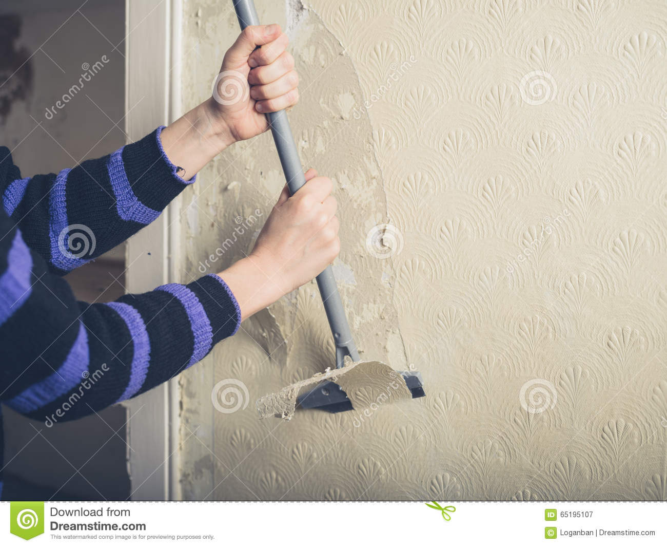 A Young Woman Is Renovating House And Stripping Off The Wallpaper With Scraper