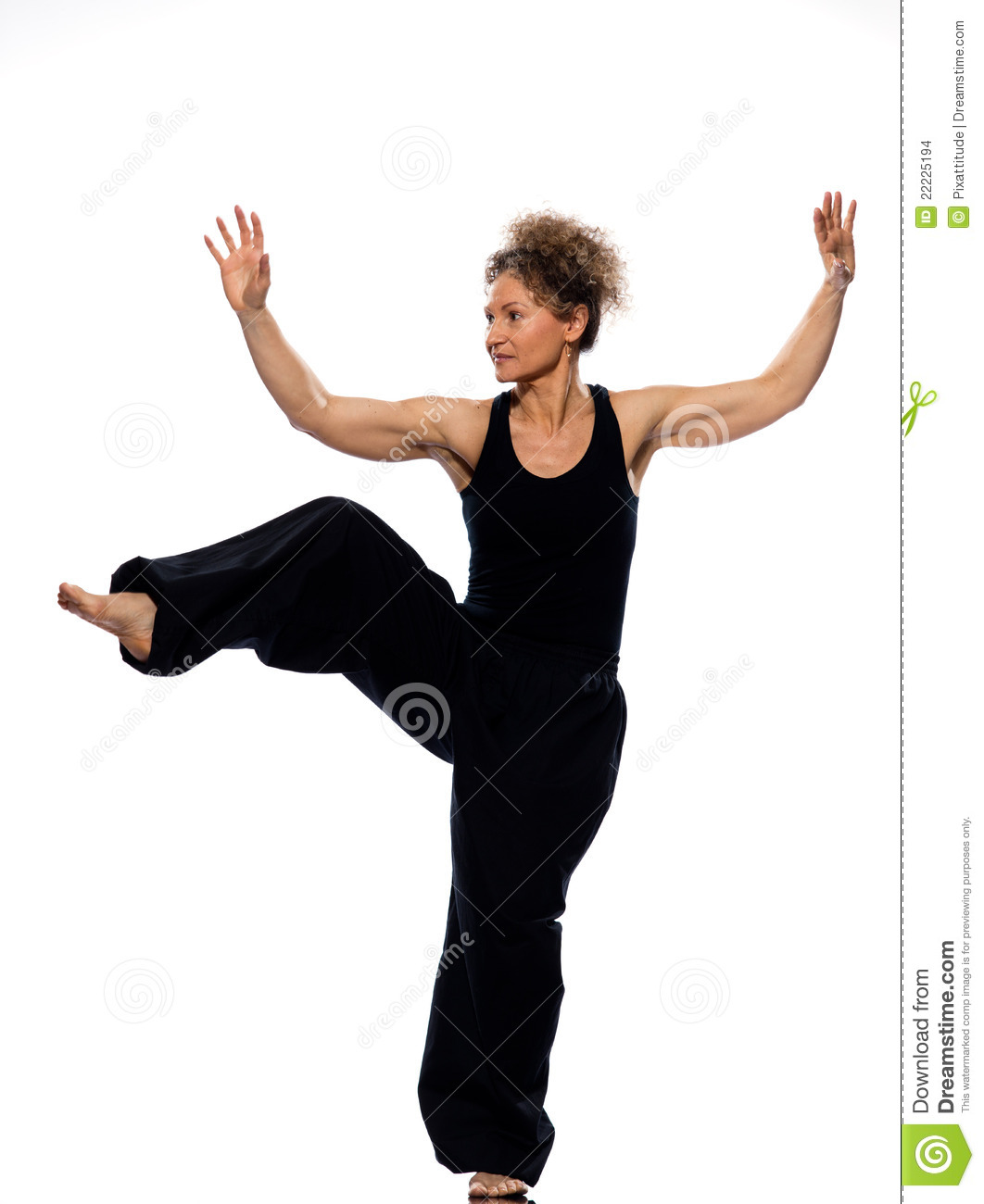 Woman Tai Chi Stock Images - Image 22225194-4419