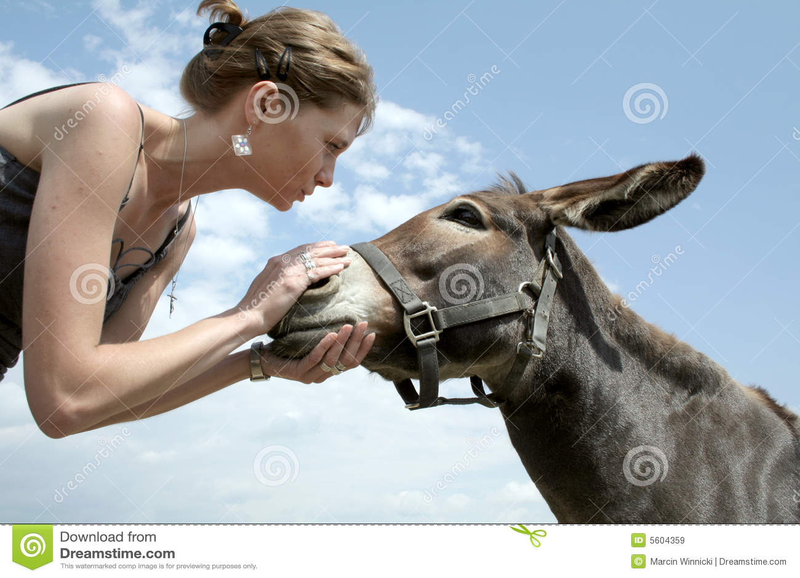 Woman Talking To Donkey Royalty Free Stock Images - Image: 5604359
