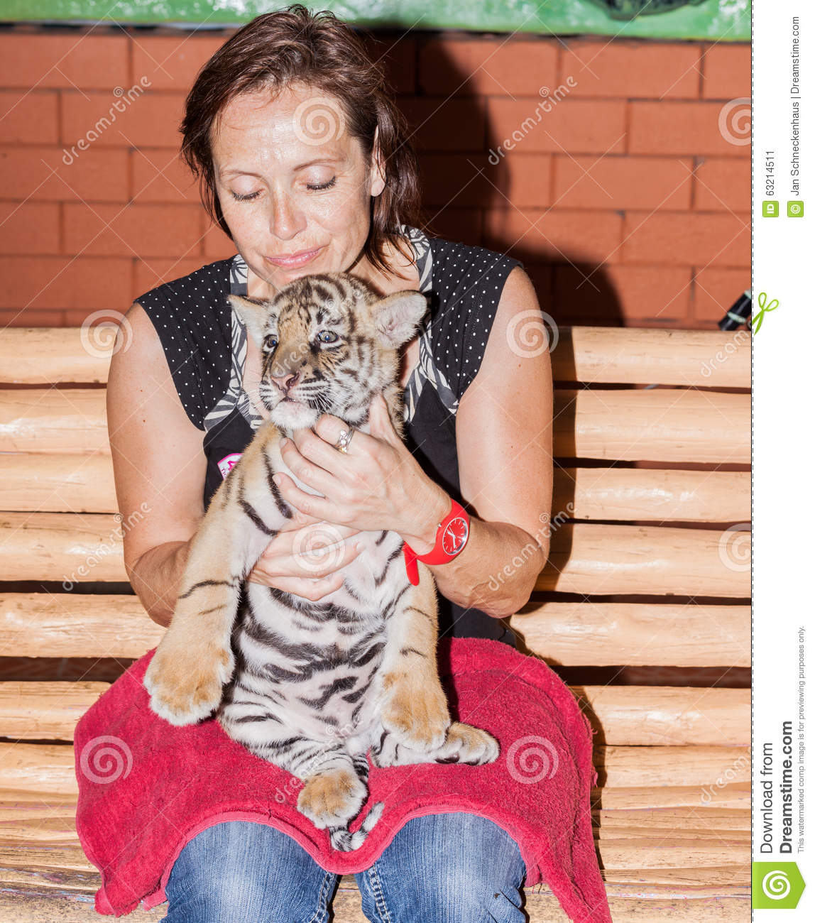 Woman with a tiger cub on her lap