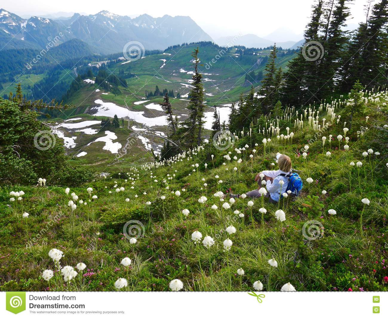 Woman tourist sitting among wild flowers with mountain view.