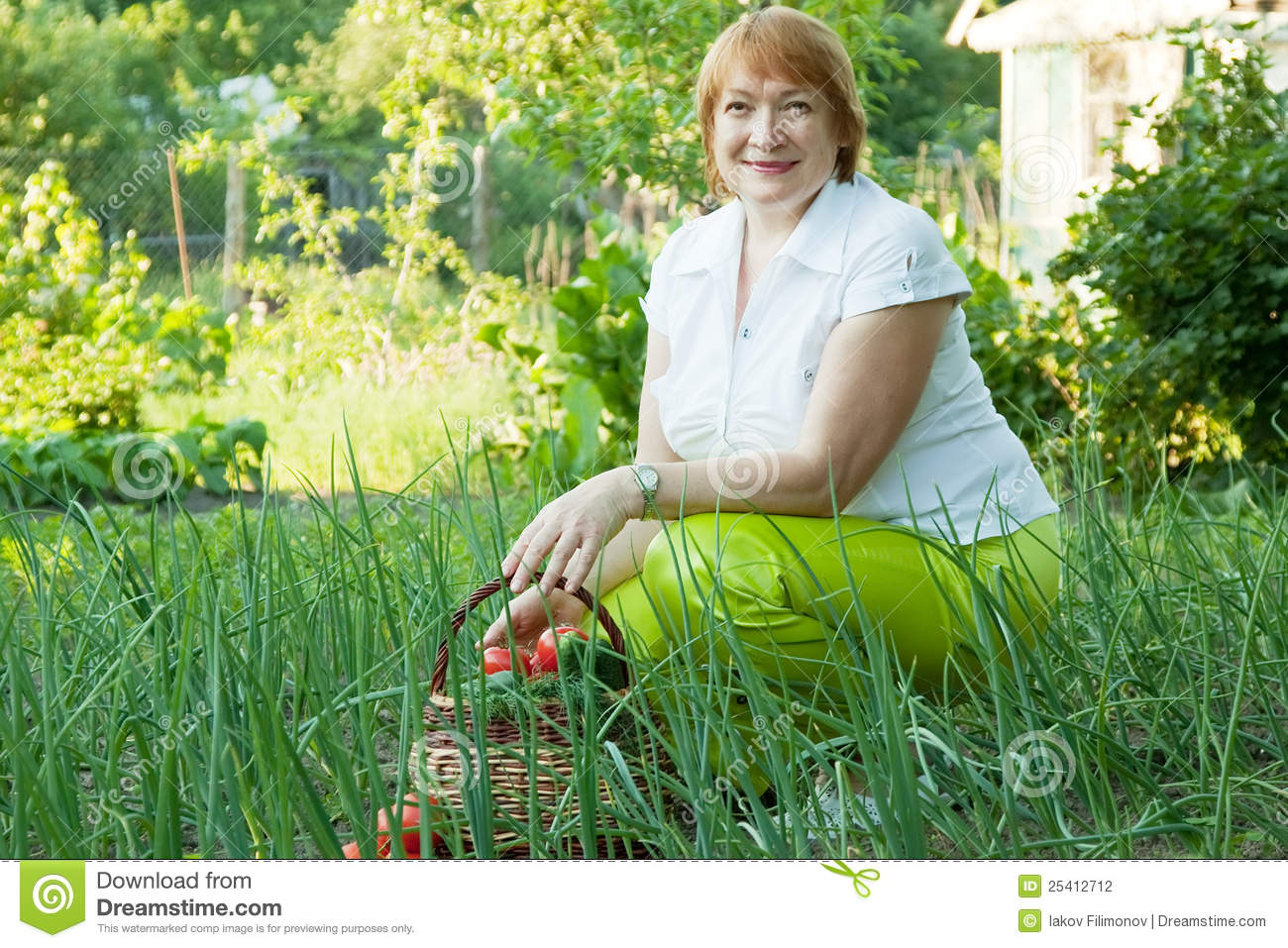 Woman In Vegetables Garden Stock Photography Image 25412712