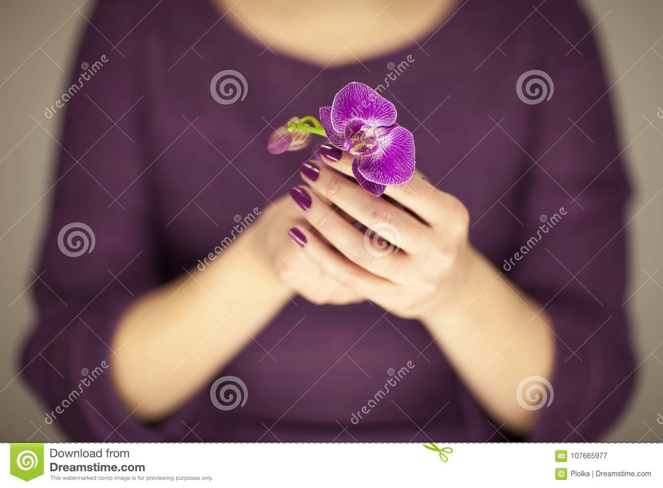 Woman in violett 50`s dress hands holding some orchid flowers