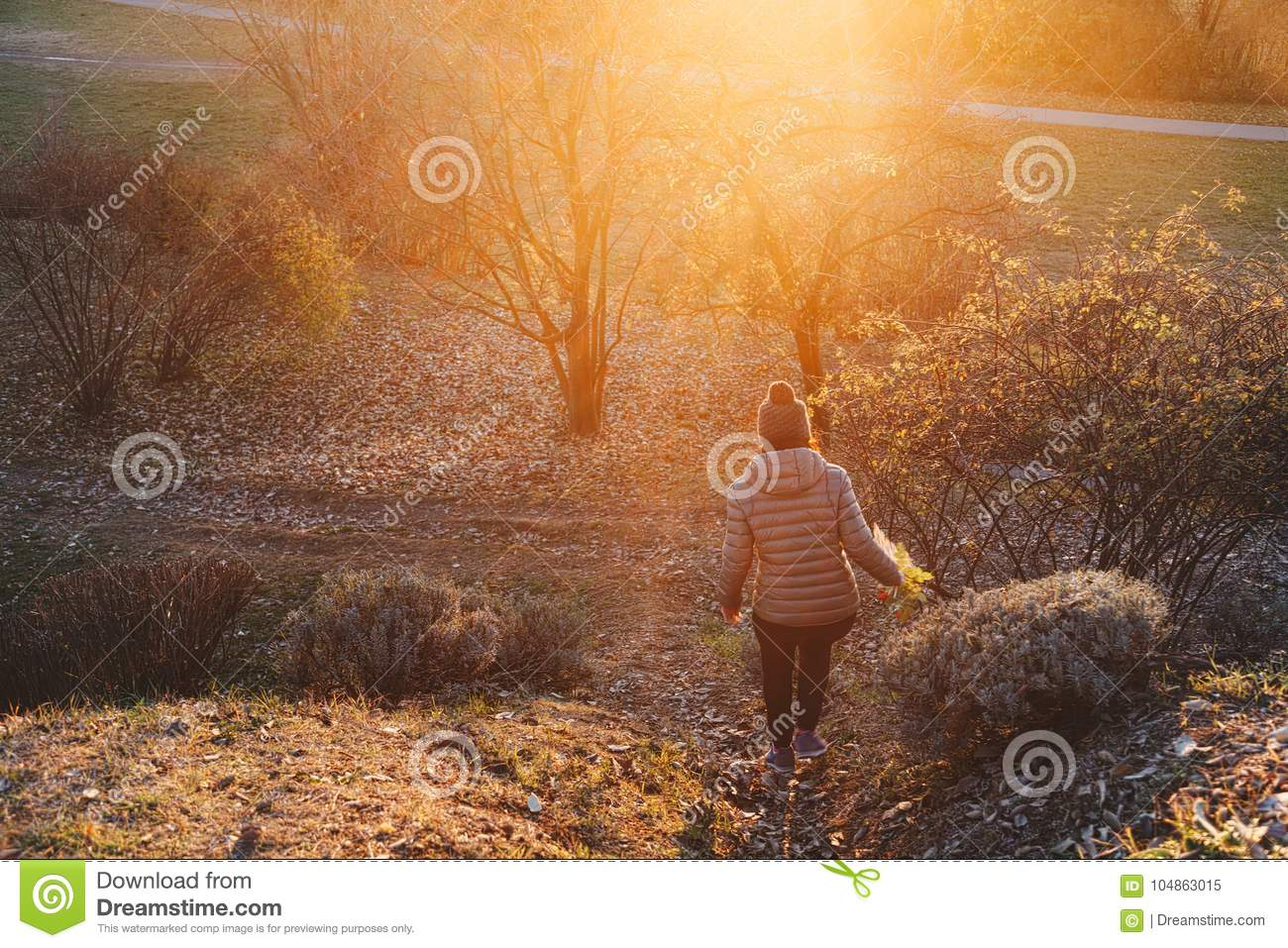 woman walking along a path with flower in her hand - happy traveler enjoying sunset view