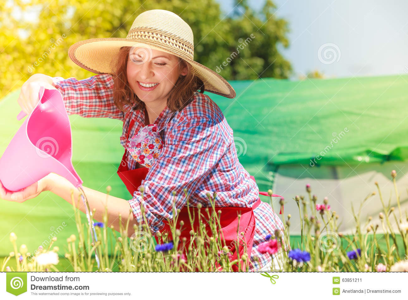 Watering The Flowers Royalty-Free Stock Image ...
