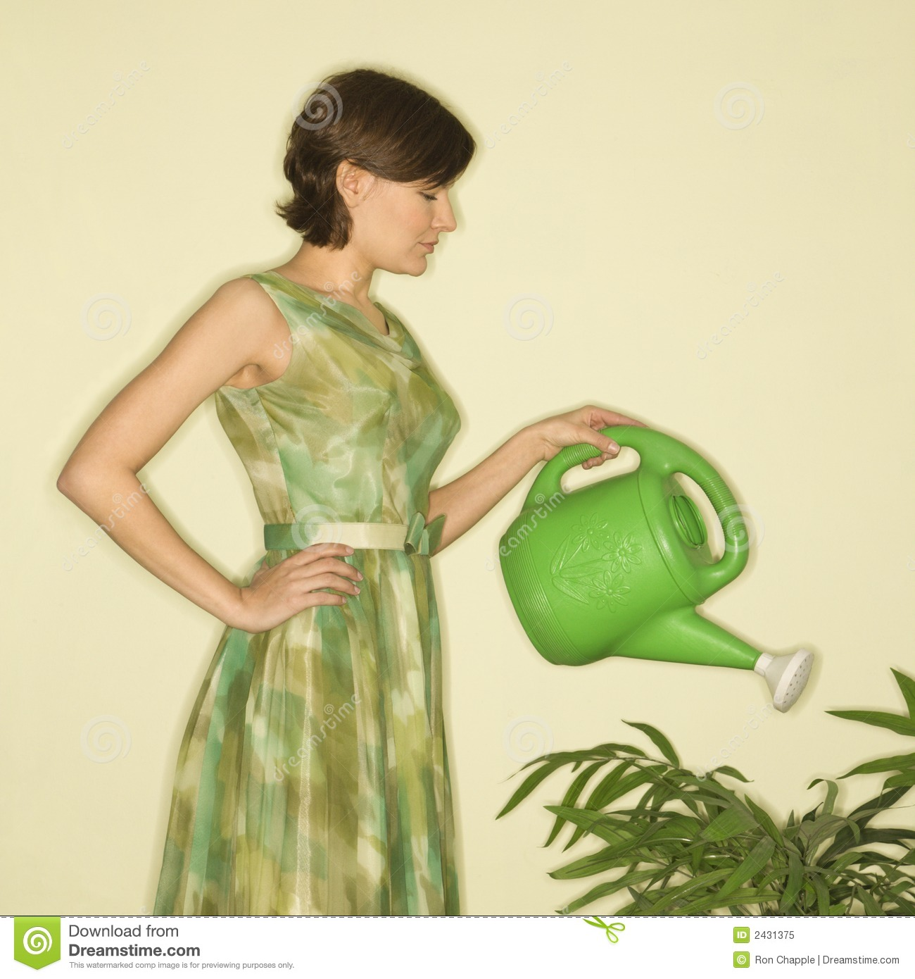 Woman watering plant. stock image. Image of caucasian ...