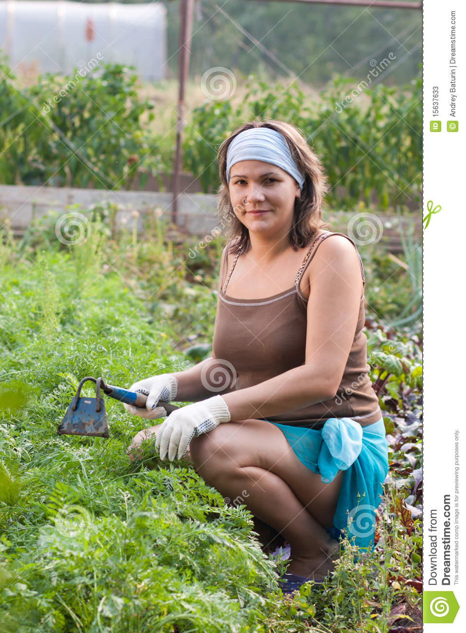 Woman weeding vegetable garden stock photos image 15637633 for Potager naturel sans entretien